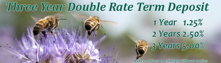 3 Yr Double Rate Term